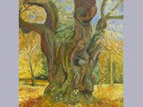 Leona Hart - Ancient Tree - oil